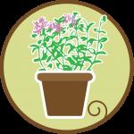 kahiaktea-farm-nursery-service