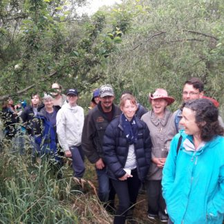 kahikatea-farm-food-forest-tour