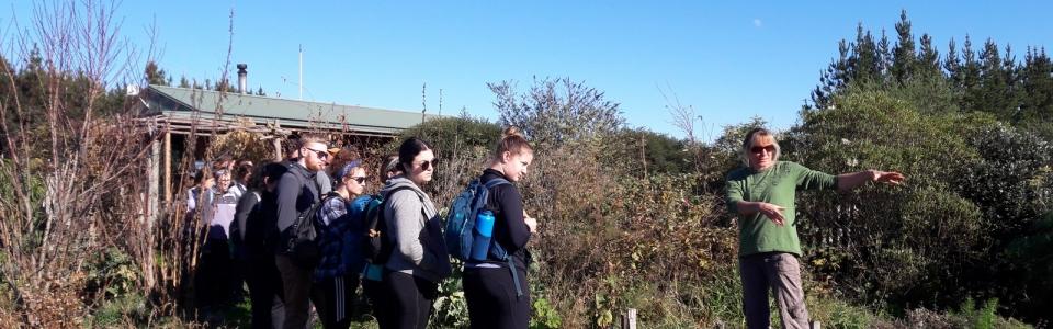 kahikatea-farm-food-forest-tour (3)
