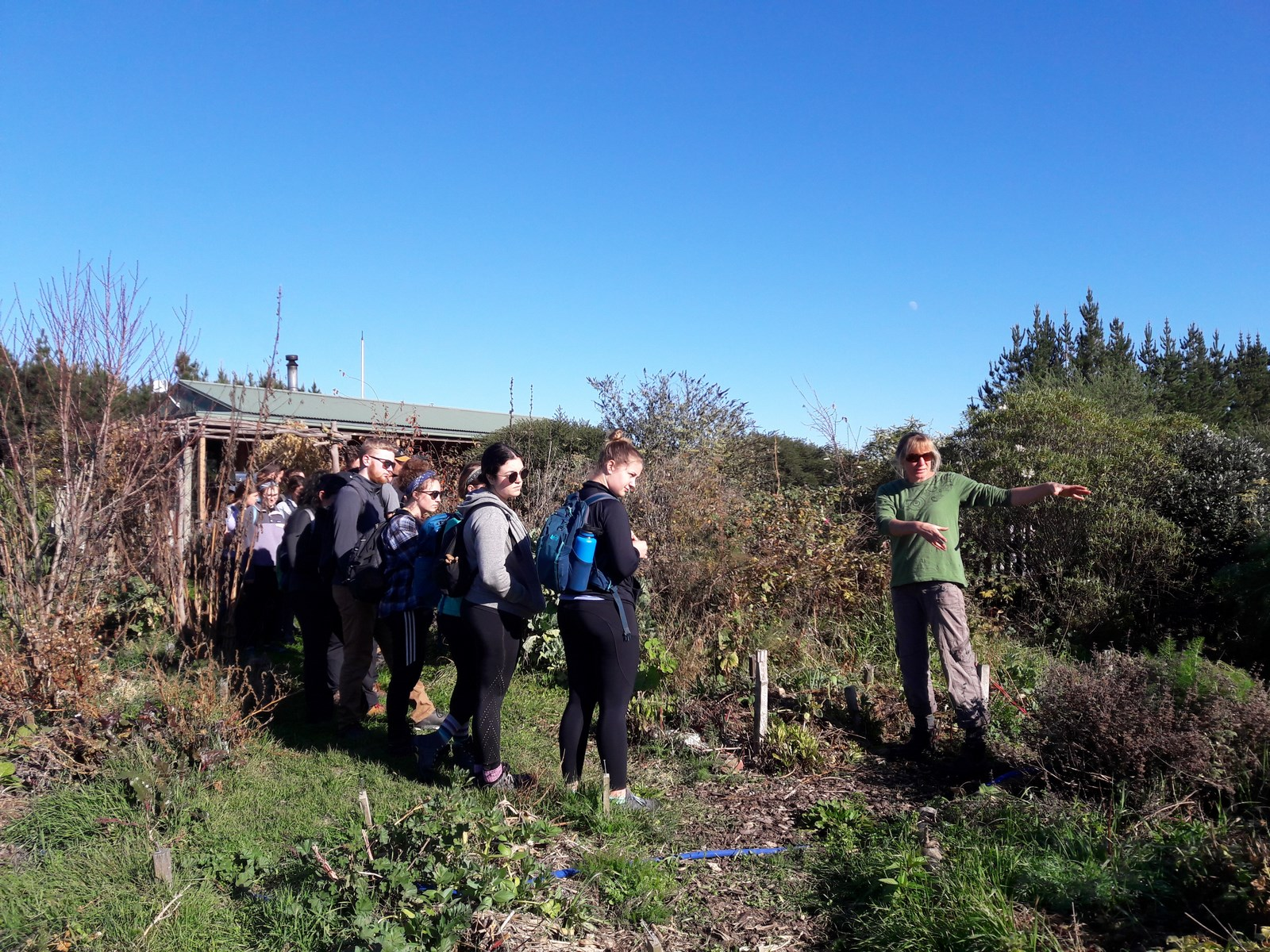 kahikatea-farm-food-forest-tour (3)