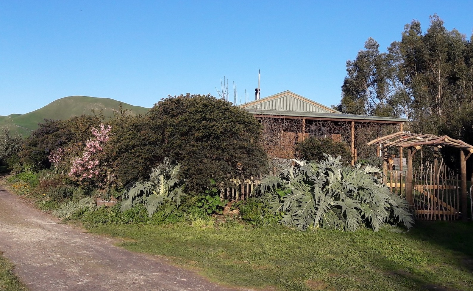 kahikatea-farm-house-side-view
