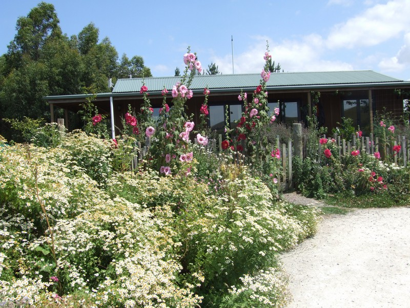 kahikatea-farm-house-in-summer