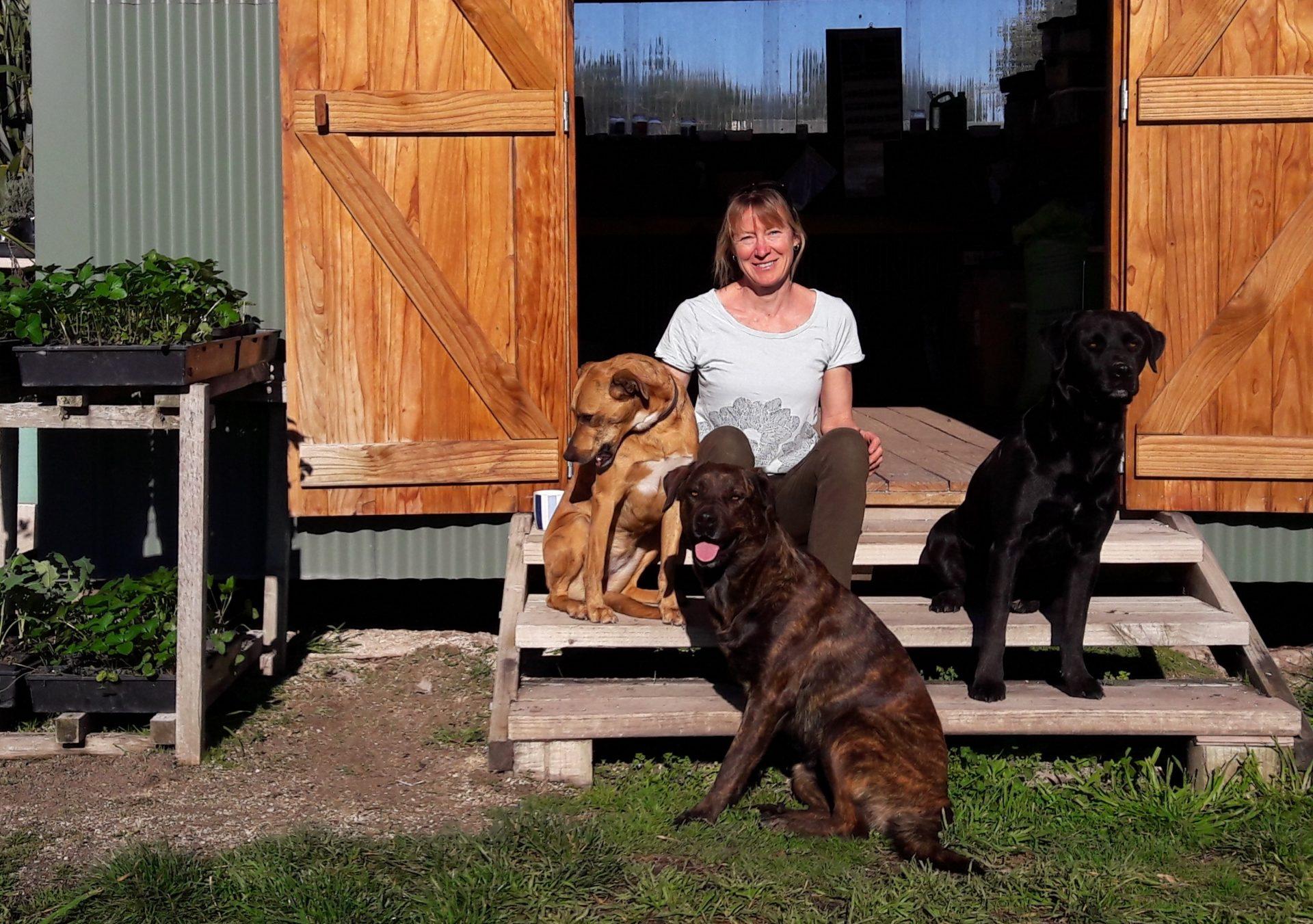 kahikatea-farm-jo-duff-nursery-dogs