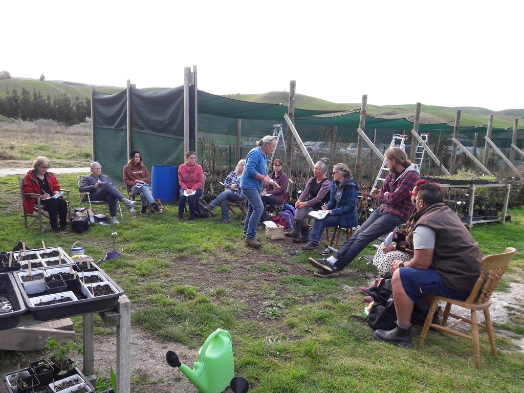kahikatea-farm-propagation-workshop