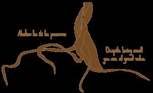 ahakoa-he-iti-he-pounamu-kahikatea-farm